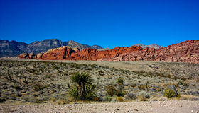 Red Rock Canyon Mountains Stock Image