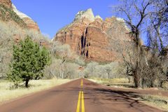 Red rock canyon and mountains, Zion National Park, Utah Stock Photo