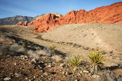 A Red Rock Canyon National Conservation Area Stock Photography