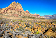 Red Rock Canyon National Conservation Area. Nevada Stock Photography