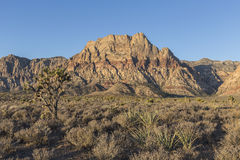 Red Rock Canyon National Conservation Area in Nevada Stock Image