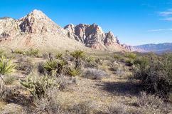 Red Rock Canyon National Park, Nevada Stock Images