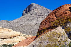 Red Rock Canyon National Park. Turtlehead peak in Red Rock Canyon just outside of Las Vegas Nevada Royalty Free Stock Photo