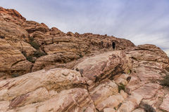 Red Rock Canyon. Royalty Free Stock Photo