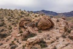 Red Rock Canyon. Stock Photos