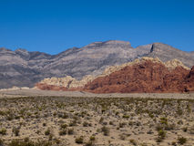 Red Rock Canyon near Las Vegas Nevada. Desert with mountains in background. Desert plants in foreground Stock Photo