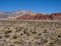 Red Rock Canyon near Las Vegas Nevada. Mountain with desert canyon and plants in foreground Stock Images