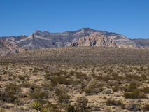 Red Rock Canyon near Las Vegas Nevada. Mountain with desert canyon and plants in foreground Stock Image