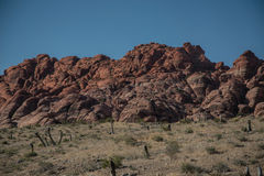 Red Rock Canyon Near Las Vegas, Nevada Royalty Free Stock Photo