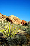 Red rock canyon Nevada Stock Image