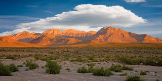 Free Red Rock Canyon, Nevada Royalty Free Stock Photography - 3365677