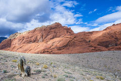 Red Rock canyon , Nevada. Stock Photos