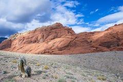 Red Rock canyon , Nevada. Stock Photos