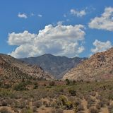 Red Rock Canyon, Nevada, USA Stock Images