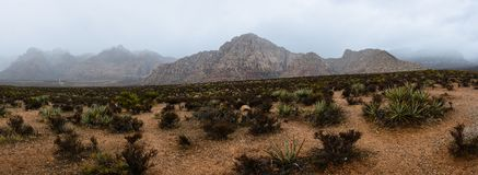 Red Rock Canyon, Nevada, USA. Red Rock Canyon in fog, Nevada, USA Stock Image