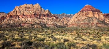 Red Rock Canyon Pano. Panoramic view of Red Rock Canyon Conservation Area, Nevada Royalty Free Stock Photography