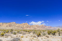 Red Rock Canyon panoramic, Mojave Desert, Nevada, USA Stock Photos