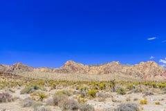 Red Rock Canyon panoramic, Mojave Desert, Nevada, USA Stock Photo
