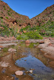 A red rock canyon and shallow oasis pool in the Mexican desert Stock Photo