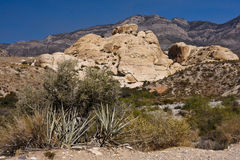 Red Rock Canyon west of Las Vegas, Nevada Stock Images