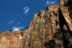 Red rock cliff. At Zion National Park Stock Photography