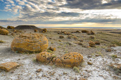 Red Rock Coulee. Odd round red concretions randomly scattered across the land in Alberta, Canada Royalty Free Stock Photo