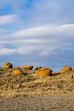 Red Rock Coulee. Odd round red concretions randomly scattered across the land in Alberta, Canada Royalty Free Stock Images