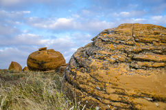 Red Rock Coulee. Odd round red concretions randomly scattered across the land in Alberta, Canada Royalty Free Stock Photos