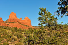 Red Rock Country in Sedona Royalty Free Stock Photography