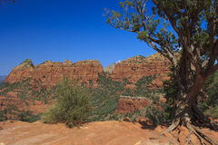 Red Rock Country Sedona Arizona. A scenic view of red rock country near sedona arizona Stock Image