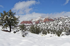 Red Rock Country Winter Royalty Free Stock Photo
