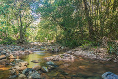 Red Rock Creek Royalty Free Stock Photos