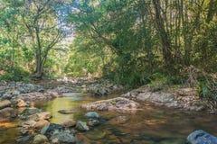Red Rock Creek royalty free stock photos