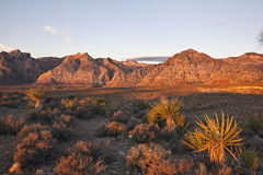 Red Rock Dawn Royalty Free Stock Photos