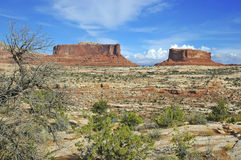 Red rock and desert landscape, Southwest USA. Red rock and desert landscape, Southwest, USA Stock Photo