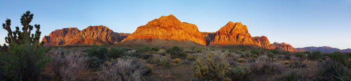 Red Rock desert at sunrise. Red Rock Canyon cliffs and desert lit up by the sunrise light Royalty Free Stock Images