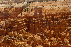 Red rock formation in bryce canyon park, utah Royalty Free Stock Photography