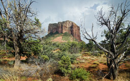 Red rock formation in Sedona,Az royalty free stock images