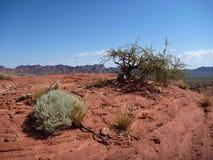 Red rock formation at sierra de las quijadas in argentina Stock Photo