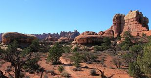 Red rock formations in Canyonlands National Park, Utah stock image