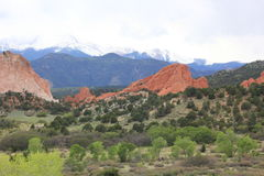 Red Rock formations at Garden of the Gods Royalty Free Stock Image