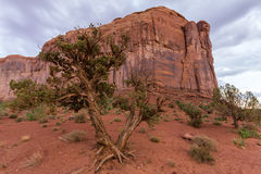 Red rock formations in Monument Valley, evening Stock Photography