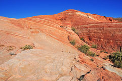 Red Rock Landscape, Southwest USA. The Stunning Red Rock Landscape, Southwest USA Royalty Free Stock Image