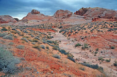 Red Rock Landscape, Southwest USA Royalty Free Stock Photo