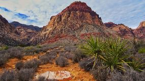 Red rock. Las Vegas nevada Royalty Free Stock Images