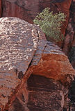 Red Rock Stock Images