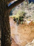 Mountain cliff waterfall. Red rock mountain Clif green tree waterfall Royalty Free Stock Image