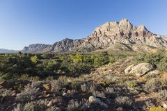 Red Rock National Conservation Area Las Vegas Nevada. View of Mt Wilson at Red Rock National Conservation Area near Las Vegas, Nevada Stock Photos