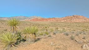 Red Rock Overlook, Red Rock Canyon Conservation Area, NV Stock Image