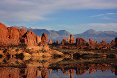 Red Rock Reflections Stock Photography